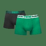 Puma PLACED LOGO Green